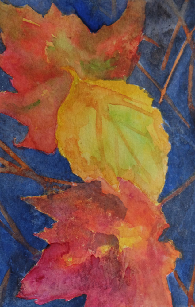 dawnchandler_2016_watercolor-vermont-maple-leaf-study_01_1000px