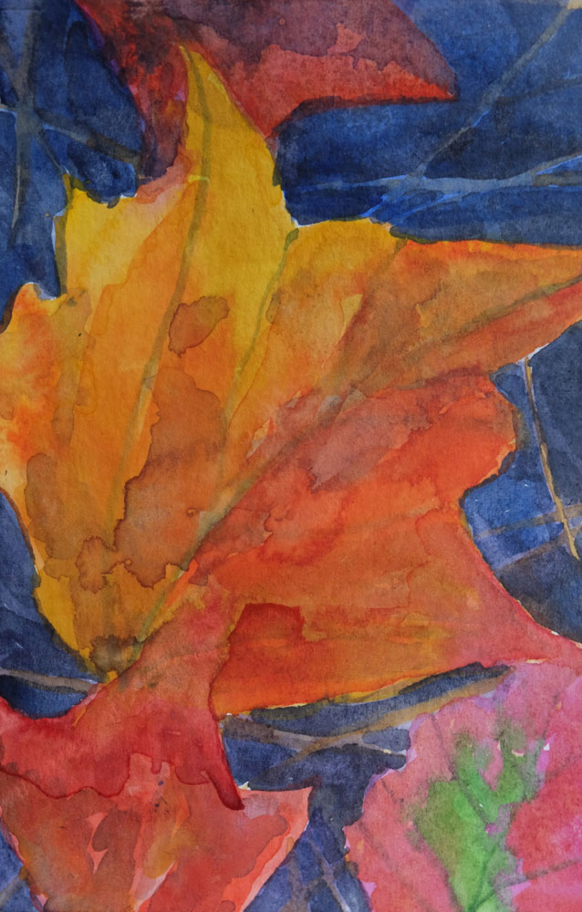 dawnchandler_2016_watercolor-vermont-maple-leaf-study_02_1000px