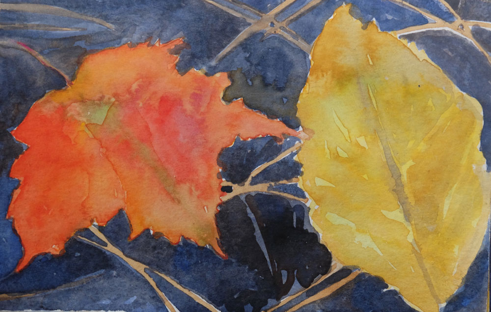 dawnchandler_2016_watercolor-vermont-maple-leaf-study_05_1000px