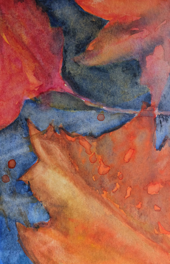 dawnchandler_2016_watercolor-vermont-maple-leaf-study_06_1000px