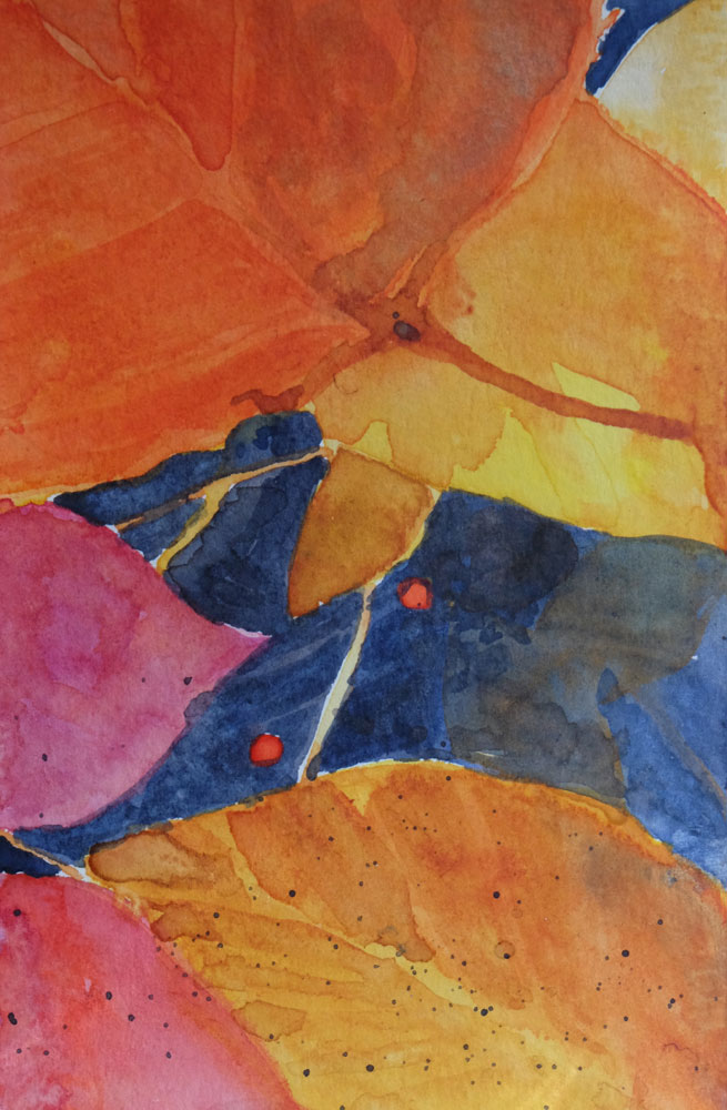 dawnchandler_2016_watercolor-vermont-maple-leaf-study_07_1000px