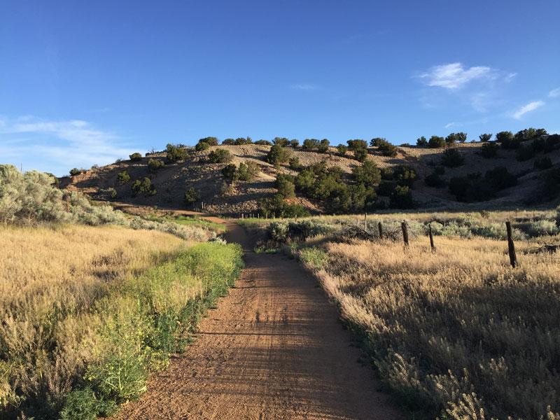 A May morning along Santa Fe's Rail Trail; photo by Santa Fe artist Dawn Chandler