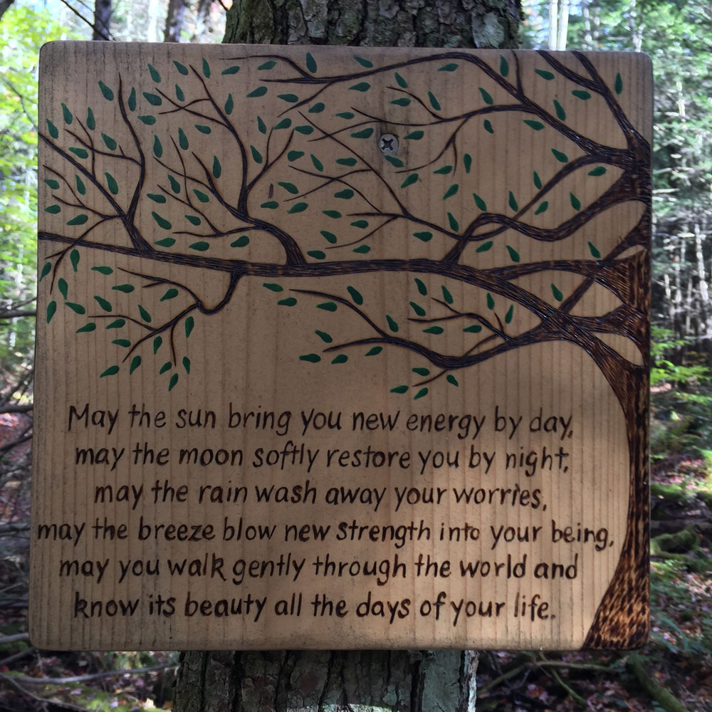 a beatiful plaque noticed by artist dawn chandler deep in a vermont wood