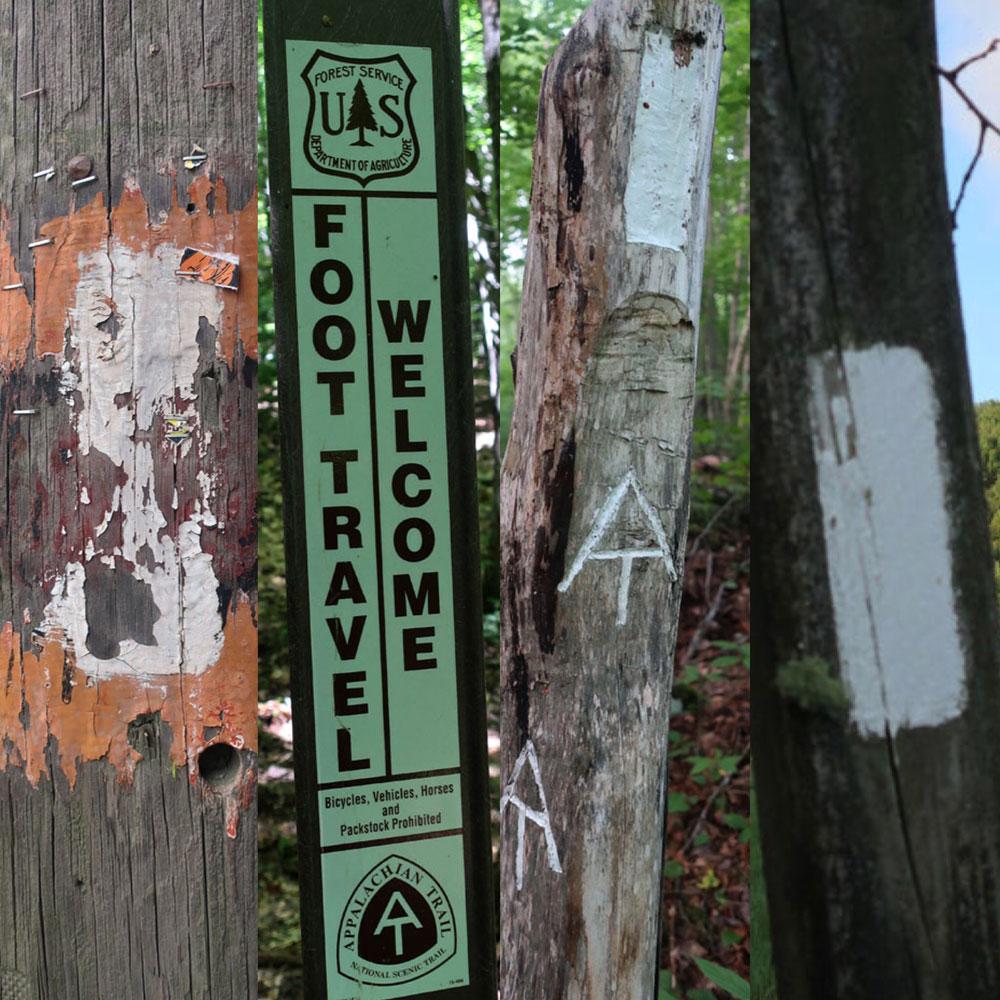 Along the Vermont Appalachian Trail - trail blazes - photo by TaosDawn - Santa Fe artist and backpacker Dawn Chandler