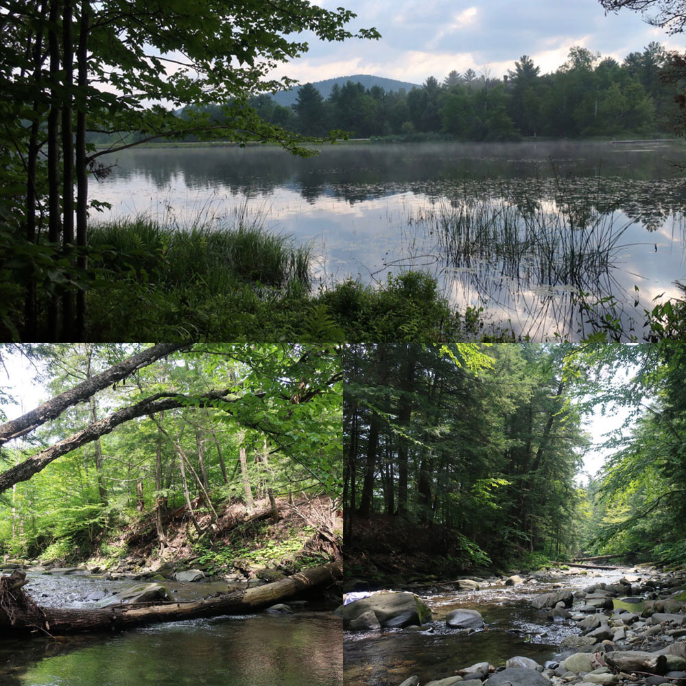 Along the Vermont Appalachian Trail - rivers and ponds - photo by TaosDawn - Santa Fe artist and backpacker Dawn Chandler