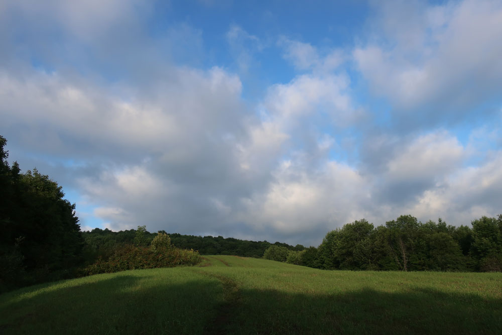Along the Vermont Appalachian Trail - morning meadow - photo by TaosDawn - Santa Fe artist and backpacker Dawn Chandler