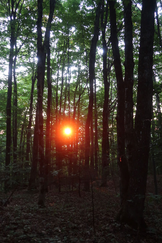 Along the Vermont Appalachian Trail - sunrise below Thistle Hill Shelter - photo by TaosDawn - Santa Fe artist and backpacker Dawn Chandler