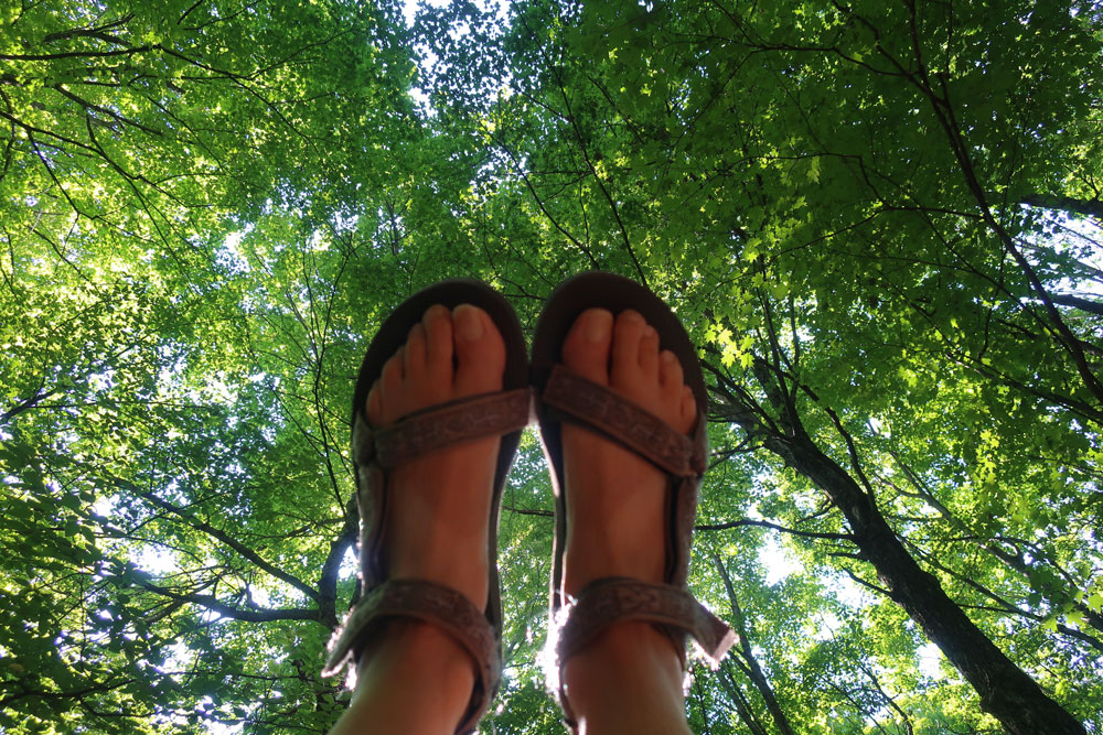 Along the Vermont Appalachian Trail - my hiker's feet silhouetted against a sunlit canopy of vermont trees - photo by TaosDawn - Santa Fe artist and backpacker Dawn Chandler
