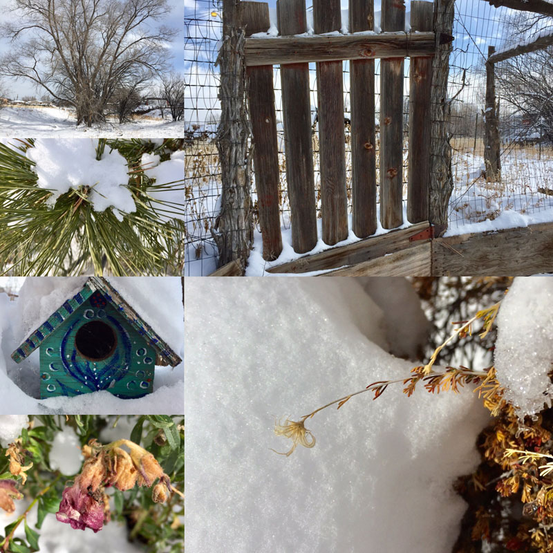 photo montage of Santa Fe snow 28 December 2018 - by Dawn Chandler