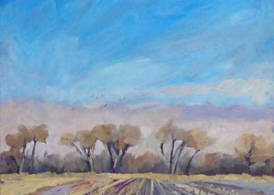 nebraska spring fields and cottonwoods