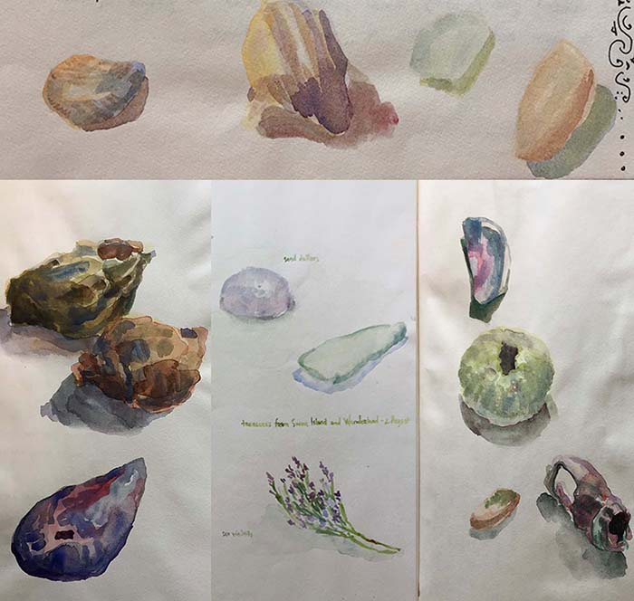 Watercolor sketches of treasures found along the Maine coast, by Dawn Chandler