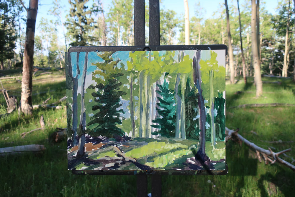 Aspen forest plein air painting by Dawn Chandler -considering the play of lights and darks in the foreground.