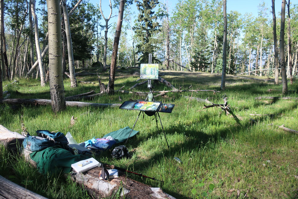 Artist Dawn Chandler's plein air painting rig, set up in an aspen forest above Santa Fe, New Mexico