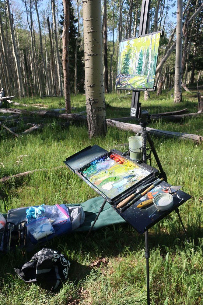 Artist Dawn Chandler's plein air painting rig, in the New Mexico's Santa Fe National Forest.