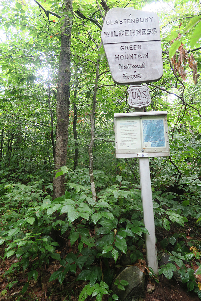 On the Long Trail, sign for the Glastenbury Wilderness of the Green Mountains. Photo by artist and thru-hiker Dawn TaosDawn Chandler.