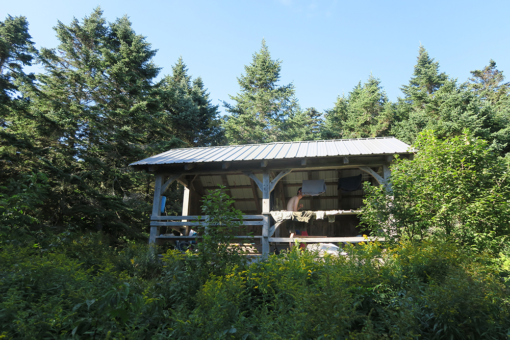 Goddard Shelter on the Long Trail, Vermont. Photo by artist and thru-hiker Dawn TaosDawn Chandler.