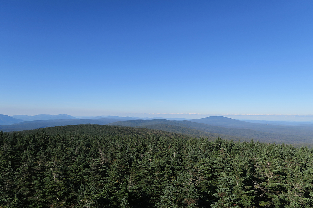 Looking across a sea of trees from Vermont's Glastenbury Peak on the Long Trail. Photo by artist Dawn Chandler.