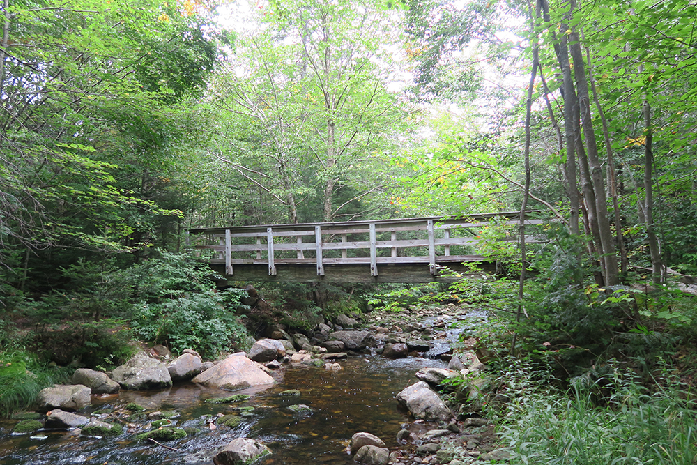 Footbridge across a beautiful Vermont Stream on the Long Trail. Photo by artist and thru-hiker Dawn TaosDawn Chandler.